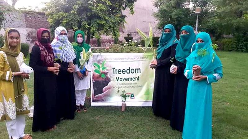 Treedom-Movement