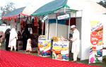 Milad Festival under Minhaj-ul-Quran Women League