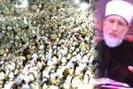 سالانہ عالمی روحانی اجتماع 2009ء