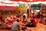 منہاج ویلفیئر فاؤنڈیشن کے تحت اجتماعی قربانی 2010