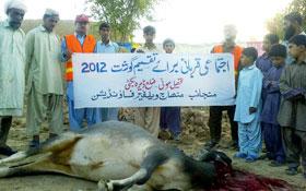 سوئی ڈیرہ بگٹی (بلوچستان) : اجتماعی قربانی 2012ء