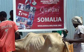 صومالیہ : منہاج ویلفیئر فاؤنڈیشن کے زیراہتمام اجتماعی قربانی 2012ء