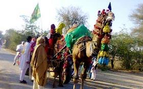 میانوالی : تحریک منہاج القرآن کے زیراہتمام جلوس عید میلاد النبی (ص)