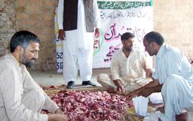 گوجرہ: منہاج ویلفیئر فاؤنڈیشن کے زیراہتمام اجتماعی قربانی