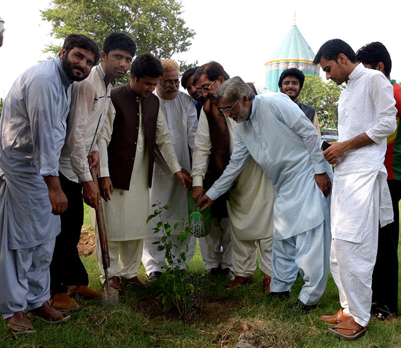 ایم ایس ایم پاکستان کی گرین پاکستان مہم شروع، 50 ہزار درخت لگائے جائیں گے