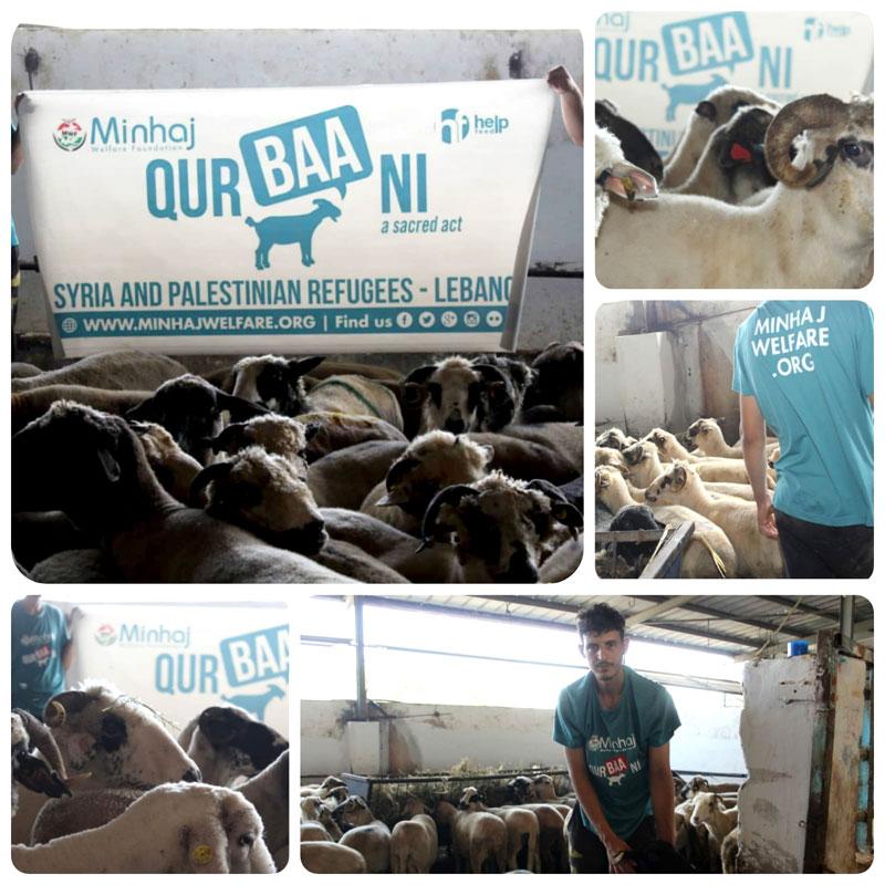 منہاج ویلفیئر فاؤنڈیشن کی طرف سے لبنان میں شامی اور فلسطینی پناہ گزینوں کے لیے قربانی کے گوشت کی تقسیم