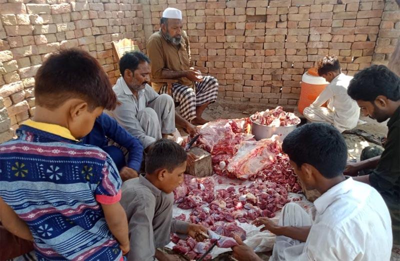 لیاقت پور (رحیم یار خان) : منہاج ویلفیئر فاؤنڈیشن کے زیراہتمام اجتماعی قربانی، مستحقین میں گوشت کی تقسیم