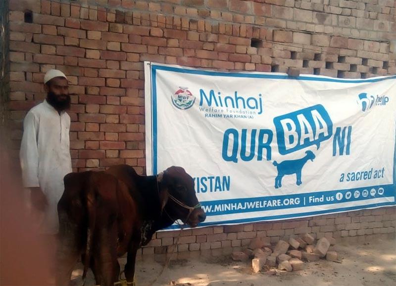 رحیم یار خان ۔ اے (ہیڈ کوارٹر): منہاج ویلفیئر فاؤنڈیشن کے زیراہتمام اجتماعی قربانی، مستحقین میں گوشت کی تقسیم