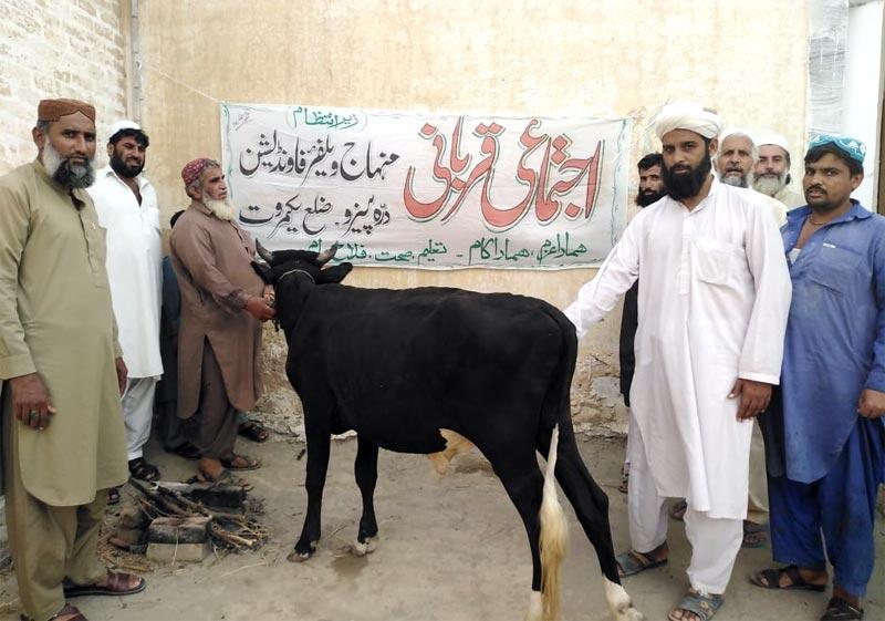 لکی مروت: منہاج ویلفیئر فاؤنڈیشن کے زیراہتمام اجتماعی قربانی، مستحقین میں گوشت کی تقسیم