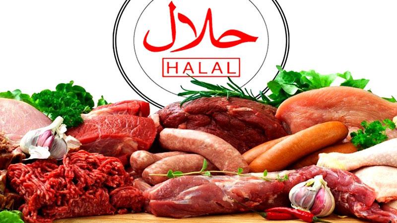 اسلام کے تصور حلال و حرام کے پس پردہ طبی وجوہات کار فرما ہیں: شیخ الاسلام کا تربیتی و فکری نشست سے خطاب