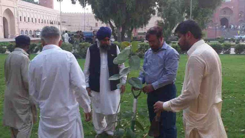 منہاج القرآن اور بابا گرونانک سوسائٹی کے زیر اہتمام شجر کاری مہم کا آغاز
