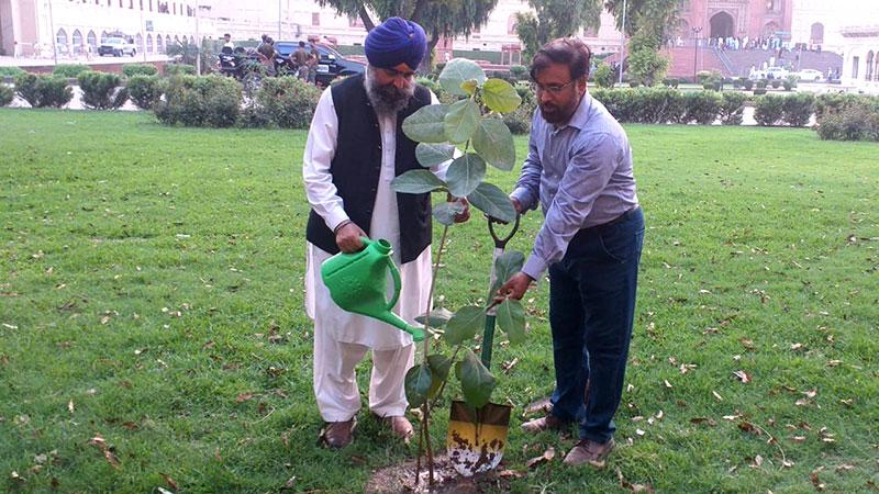 منہاج القرآن اور بابا گرونانک سوسائٹی کے زیر اہتمام شجر کاری مہم